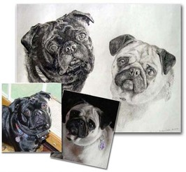 dog art by joelle bhullar